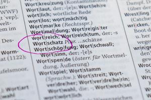 """""""Wortschatz"""" im Wörterbuch"""